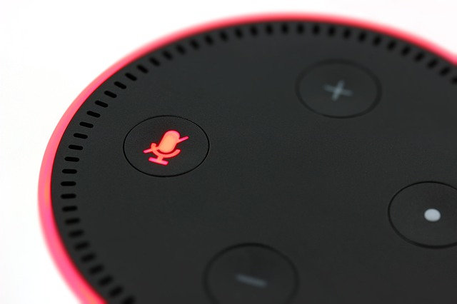 voice-activated search